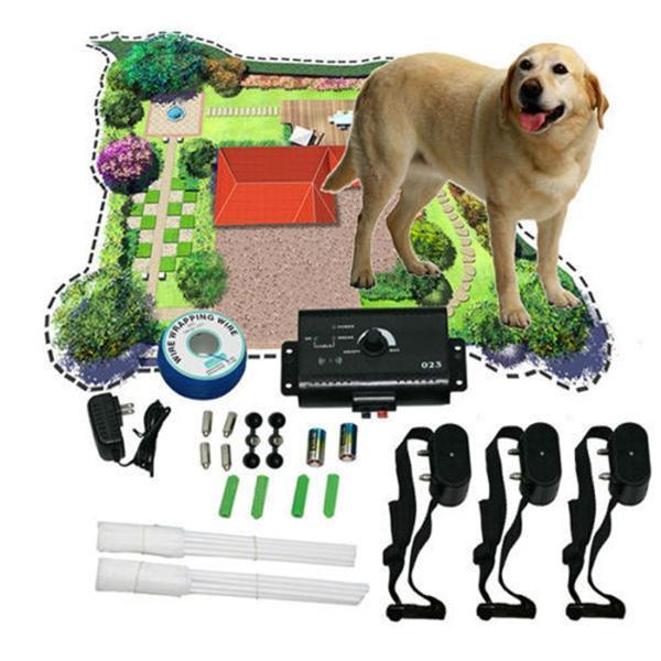 Láthatatlan, elektromos kutyakerítés: sokkal olcsóbb, mint várat építeni!